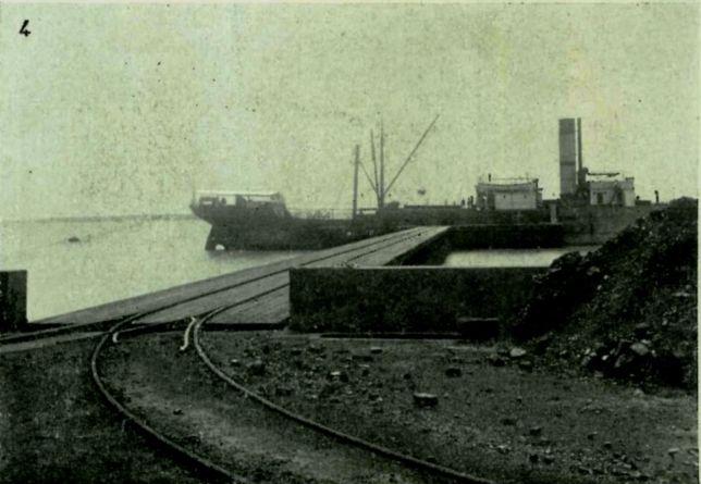 Carvão - Pinheiro
